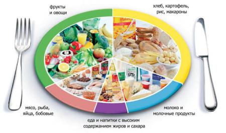 Правильное питание – здоровый источник энергии для жизни, работы и творчества