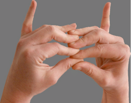 Составляем мудру «Лестница небесного храма»: кончики пальцев левой руки прижимаются между кончиками пальцев правой руки (пальцы правой руки всегда внизу). Мизинцы обеих рук свободны, выпрямлены, обращены кверху. Дыхание должно быть ровным. Время упражнения – 2 минуты