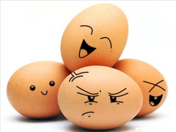 Диета Магги яичная на 4 недели полное меню  Культура