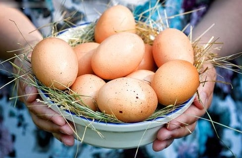Маски для волос с яйцом домашние рецепты