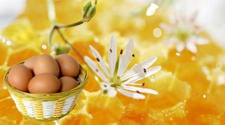 мед+яйцо