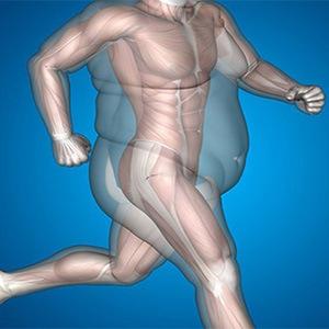 быстро скинуть вес без диет